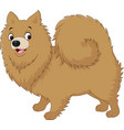 cartoon dog pomeranian husky vector image vector image