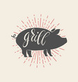 grill pork on white background vector image