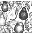 pear seamless pattern hand drawn garden fruit vector image vector image