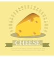 Pieces of cheese vector image