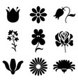 silhouette stylized flowers set vector image vector image
