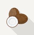 Coconut Flat Icon vector image vector image