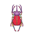 Colorful Big Horn Beetle Bug Insect vector image