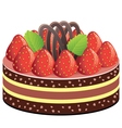 fruit cake vector image vector image