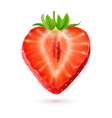 Halftone strawberry vector image vector image