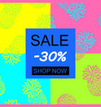 hand draw pineapple background sale vector image