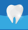 healthy tooth on blue background vector image