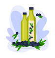 olive oil in glass bottle natural organic product vector image