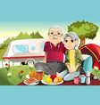 senior couple camping vector image