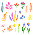 set watercolor flowers and leaves vector image vector image
