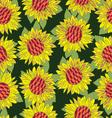 Hand drawn sunflower flower seamless background vector image