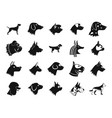 dog icon set simple style vector image