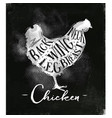 chicken cutting scheme chalk vector image vector image