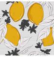 lemon on striped white black contrast background vector image vector image