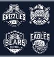 vintage sport teams monochrome emblems vector image vector image
