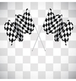 Background with checkered flags vector image vector image