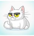 cartoon of grumpy white cat vector image vector image