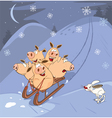 Funny Piglets Driving In Sledg vector image