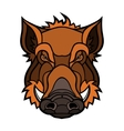 Head of boar mascot color design vector image vector image