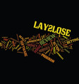 laylose review good or bad text background word vector image vector image