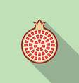 pomegranate fruit vector image vector image