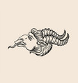 set hand drawn antique goat with horns vector image vector image