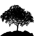tree at hill silhouette vector image vector image