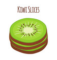 tropical fruit kiwi slices of kiwi flat vector image vector image