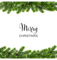 christmas background with green pine branches vector image