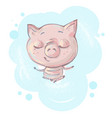 cute little pig character in seating meditation vector image vector image