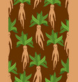 mandrake root seamless pattern legendary mystical vector image