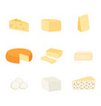 set different kinds cheese vector image