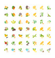 set flat icons grains nuts and herbs vector image