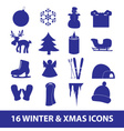 winter and xmas icon collection eps10 vector image vector image