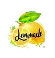 fresh lemon Isolated vector image