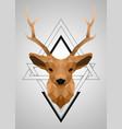 polygonal low poly deer design vector image vector image