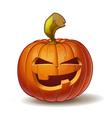 Pumpkins Mean 1 vector image vector image