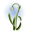 small flower on the white background vector image