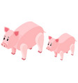 3d design for farm pigs vector image vector image