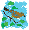 bird painting vector image