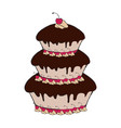 detailed cake icon vector image vector image