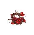 fresh cherries and a splash liquid chocolate vector image vector image