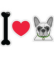 I love French bulldog hipster with collar vector image vector image