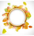 Place for text with autumn leaves vector image vector image