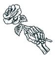 skeleton hand holding rose flower vector image vector image