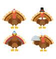 thanksgiving turkey bird collection- 1 vector image vector image