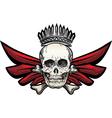 Winged skull vector image