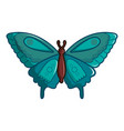 butterfly morpho anaxibia icon cartoon style vector image vector image