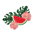 delicious watermelon cartoon vector image