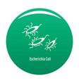 escherichia coli icon green vector image vector image